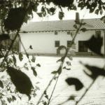 1985 sportheim